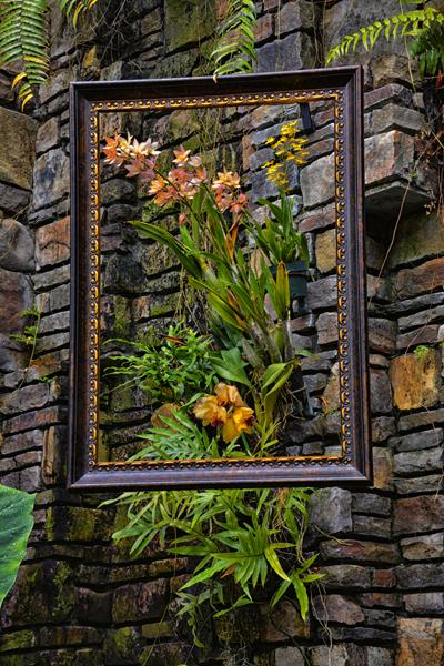 Daniel Stowe Botanical Garden Coupon Daniel Stowe Botanical Garden Coupons In Belmont Nc 28012