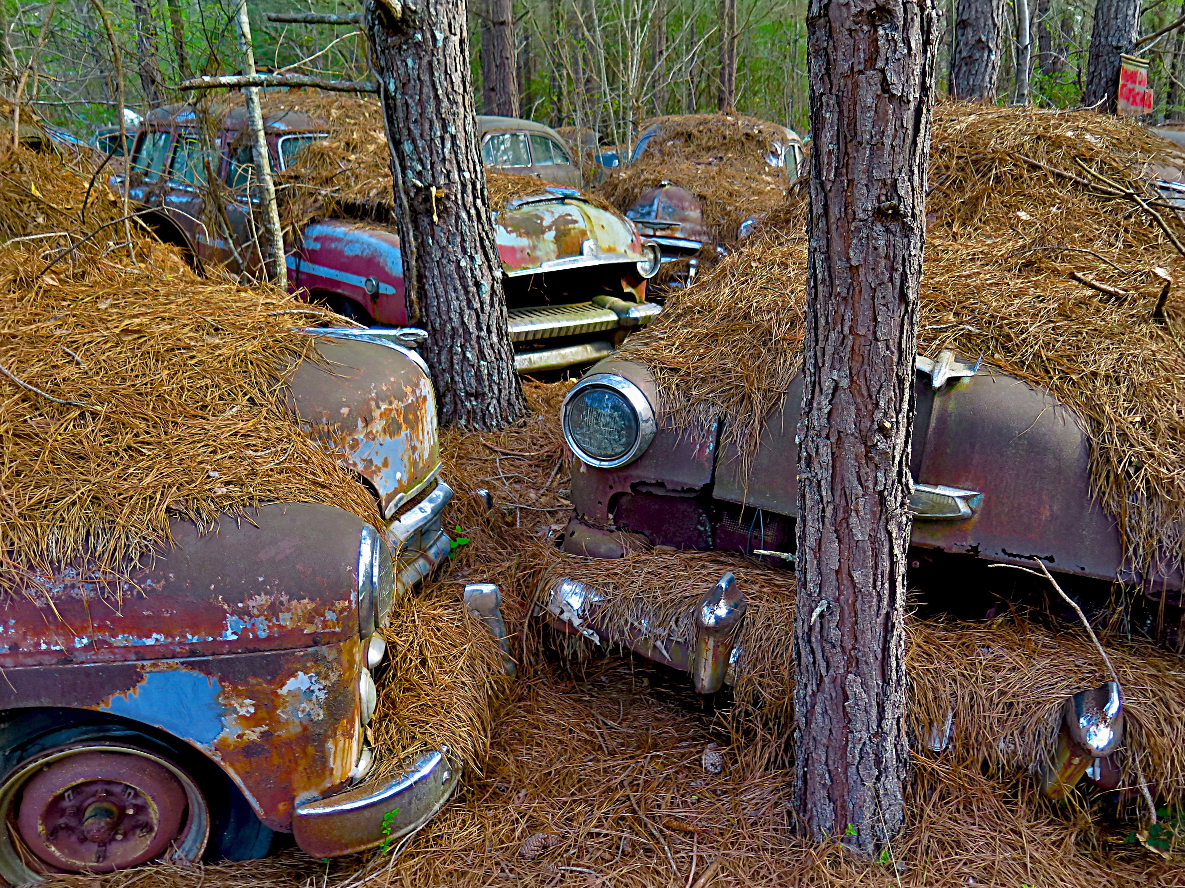 Opening – Old Car City Workshop | Mike Moats